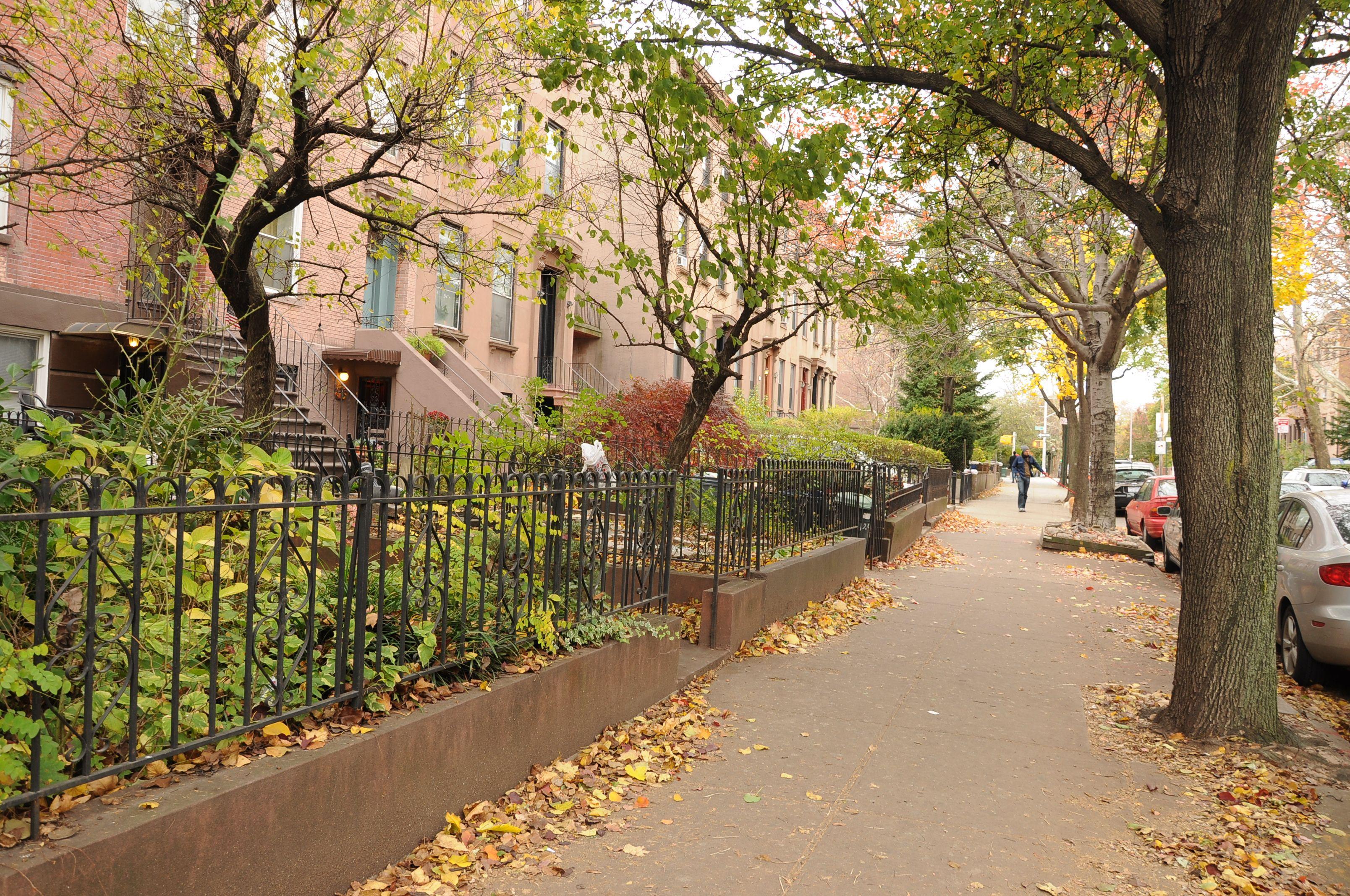 Carroll Gardens, Brooklyn | I like these Spots. | Pinterest | City ...