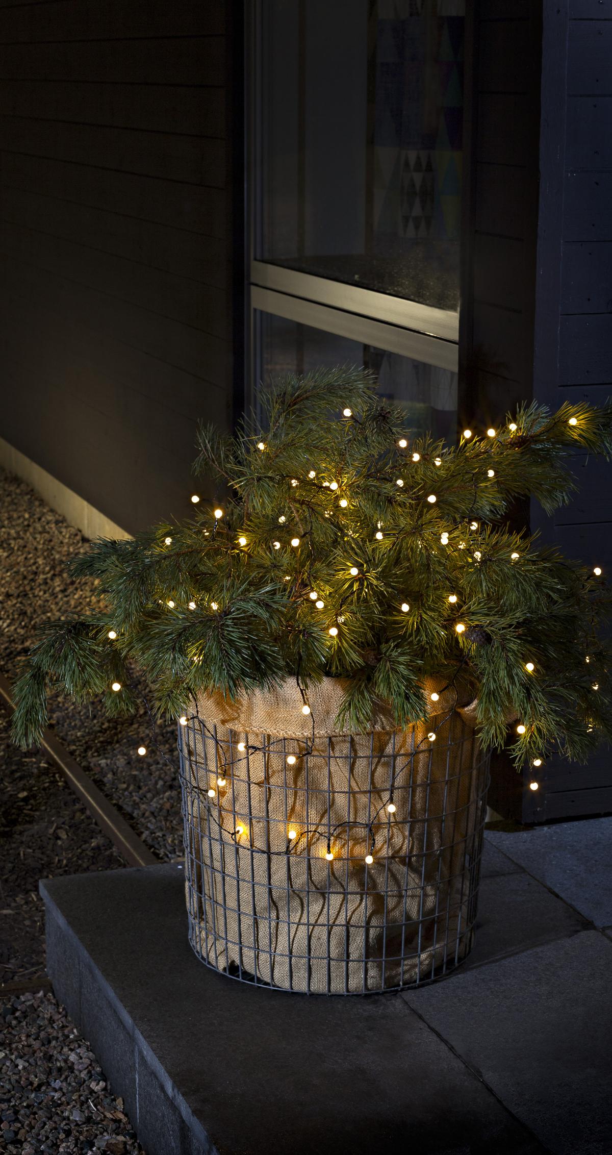 Mini-Lichterkette mit 80 Leuchten #kerstideeën