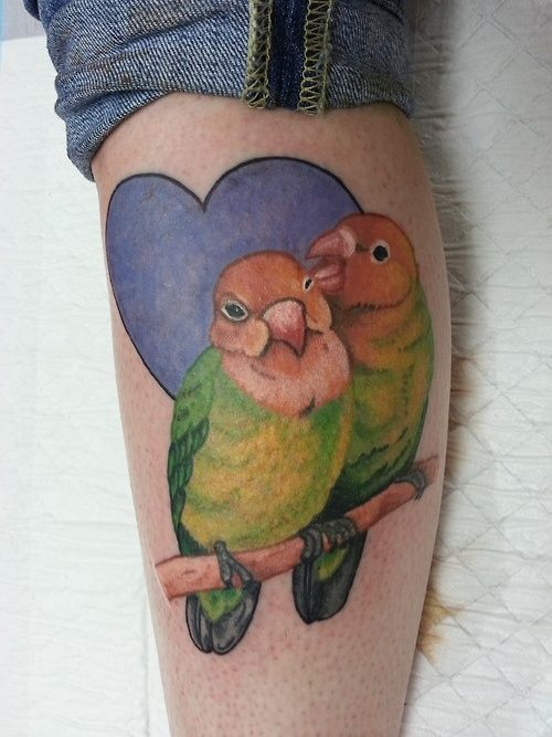 "lauren winzer | tattoo / ""love birds"" tattoo. lauren winzer 