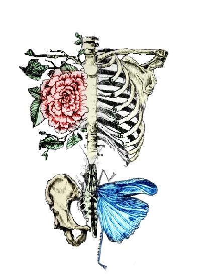 Love, anatomia e arte | Anatomía floral | Pinterest | Anatomía, Arte ...