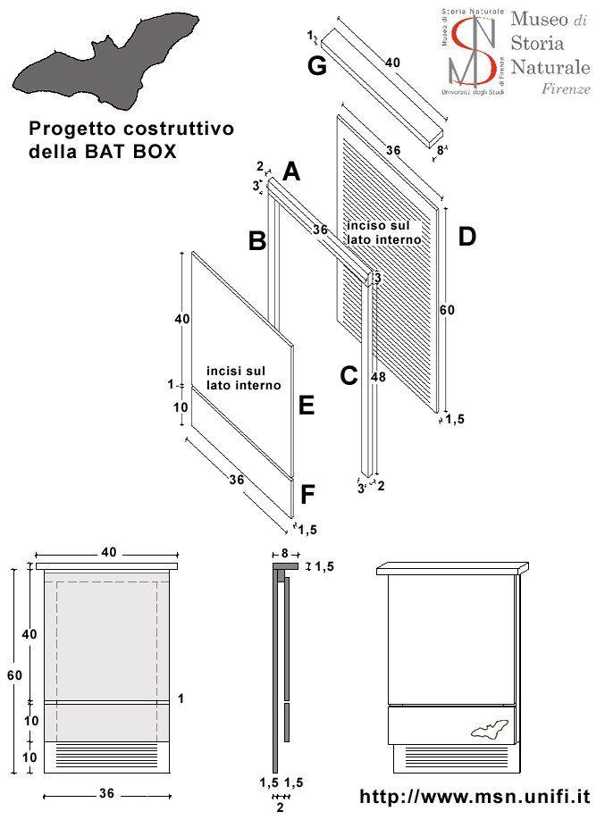 Come Costruire Una Bat Box Casette Per Uccelli