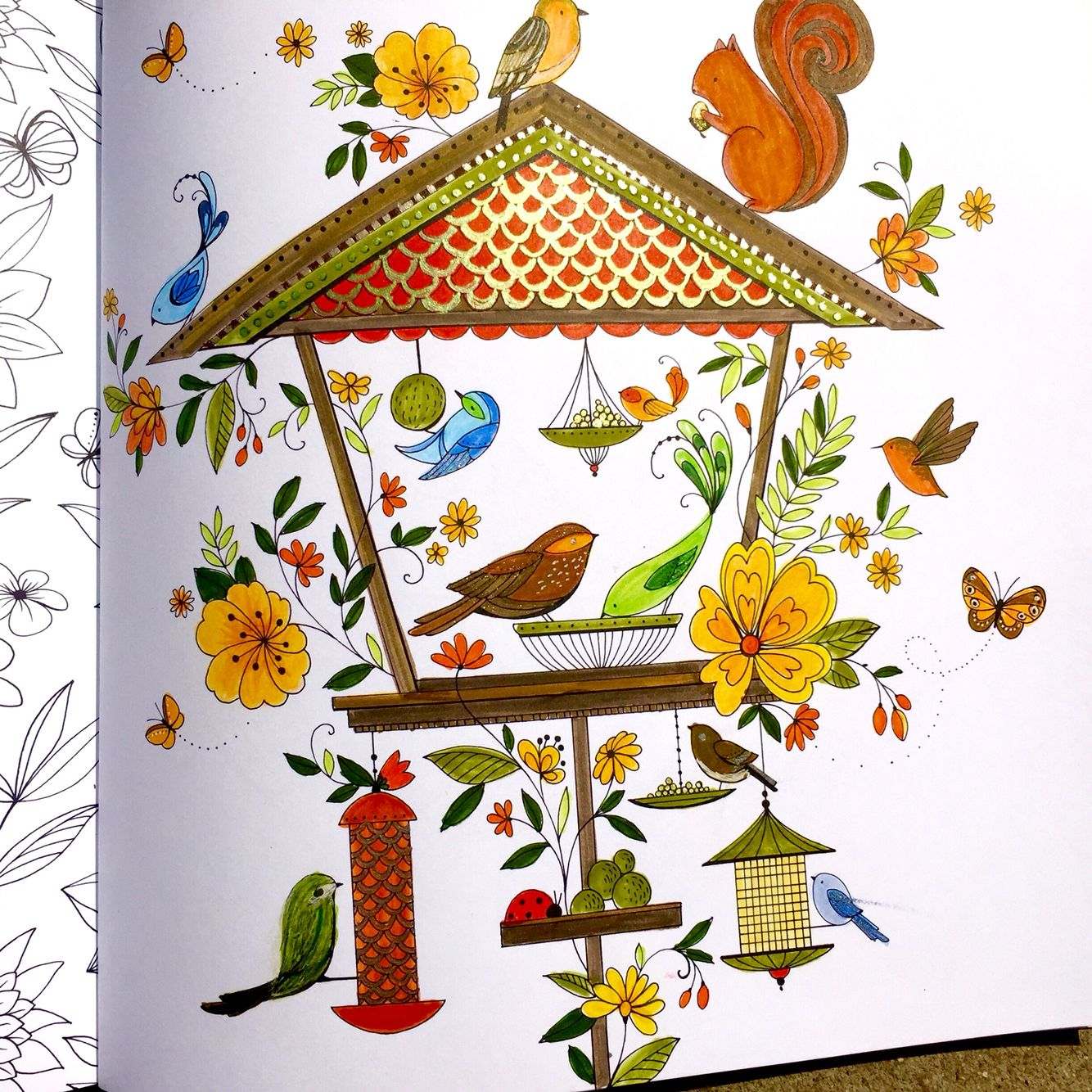 Bird House Colored By SJackson Using Carandache Water Soluble Pencils
