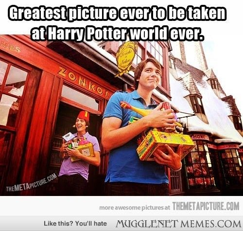 The Greatest Picture Ever Harry Potter Fan Harry Potter Funny Harry Potter World