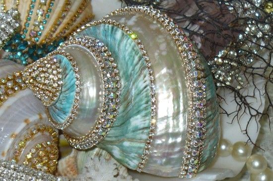 Bling Bling Aqua shell