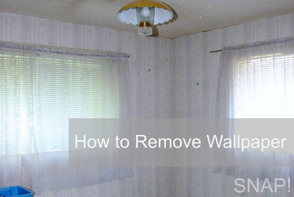 How to remove wallpaper remove wallpaper wallpaper and for What do you use to remove wallpaper
