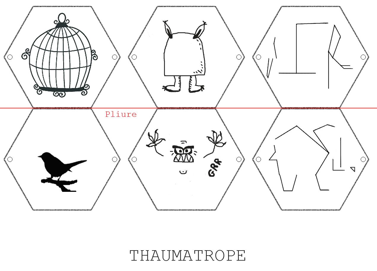 Fabulous Thaumatrope 17.3.15 BRICOLAGE ENFANT 2 comments EditThaumatrope  BN66
