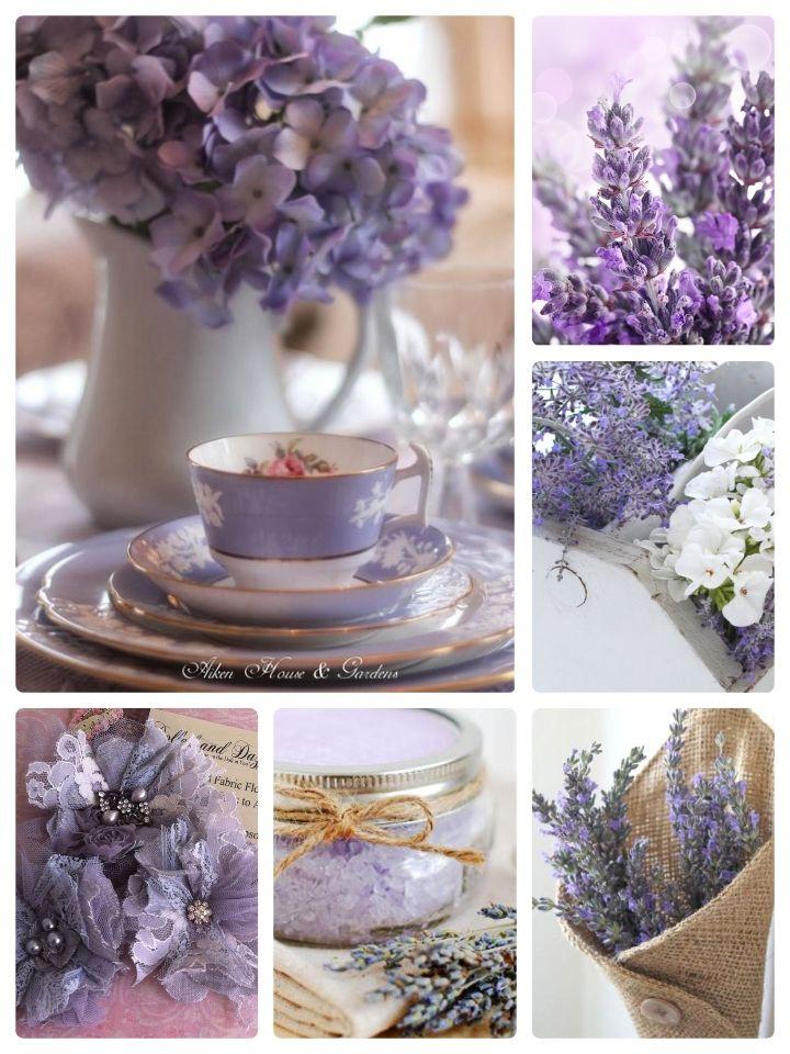 Lavender Beautiful Flowers Lavender Flowers Lavender Cottage