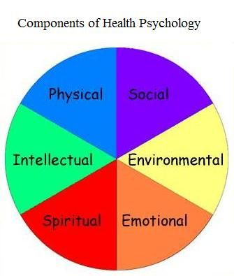 Components of Health Psychology Job interests Pinterest Health