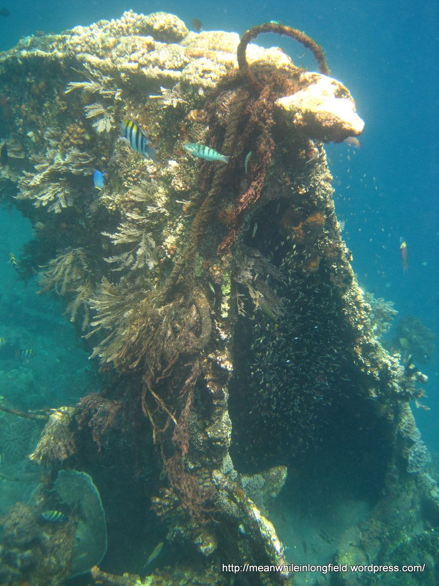 Bali Amed Snorkeling