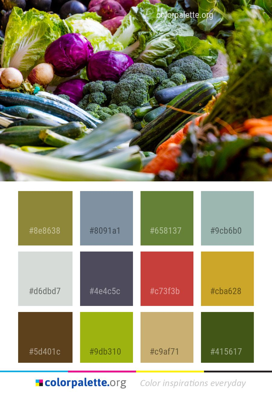 Natural Foods Vegetable Local Food Color Palette | Color Palettes ...