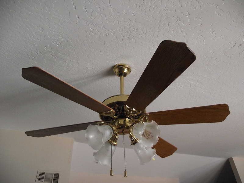 Ceiling fan replacement blades design ideas http ceiling fan replacement blades design ideas httplovelybuildinglooking mozeypictures Choice Image