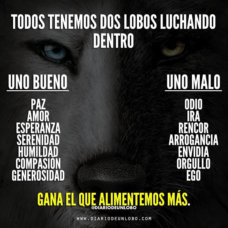 Diario De Un Lobo On Instagram Gana El Que Alimentemos Más