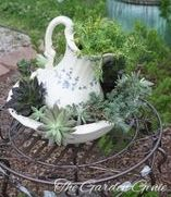 I bought the pitcher and bowl from an antique store and filled it with succulents.  Such and easy and elegant project!