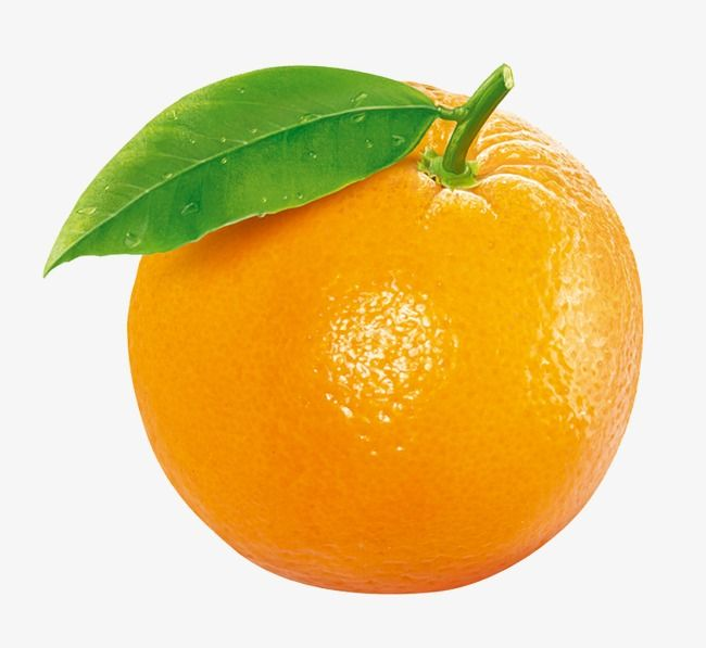 Orange Fruit Fruit Clipart Orange Fruit Fruit Photography
