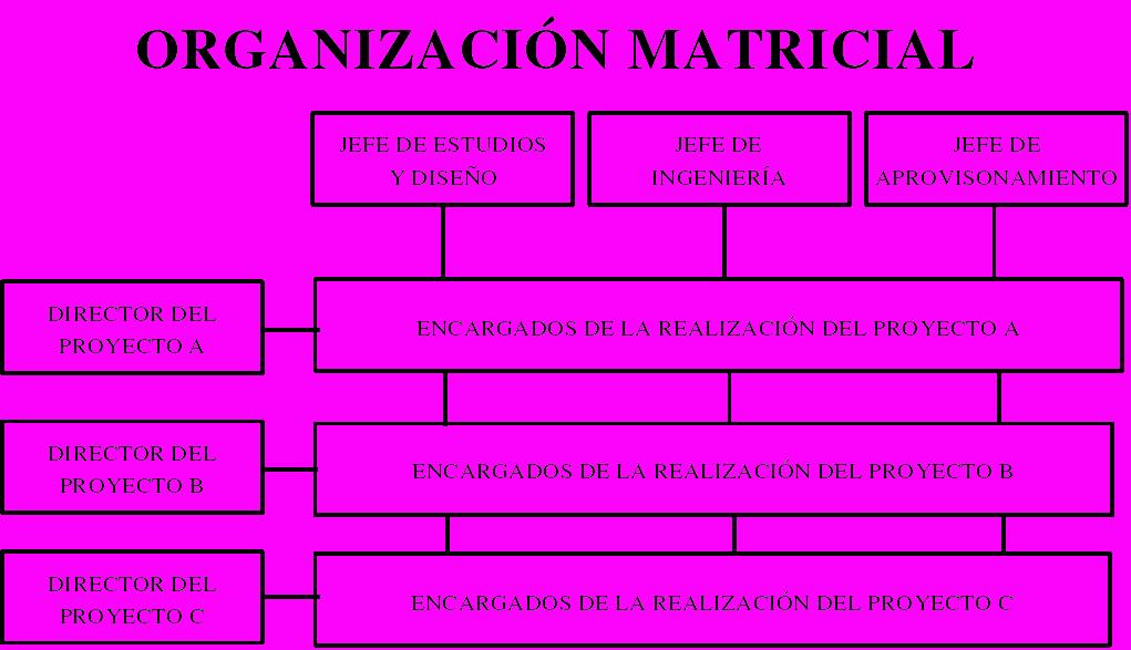 Estructura Matricial Combina La Departamentalizacion Por