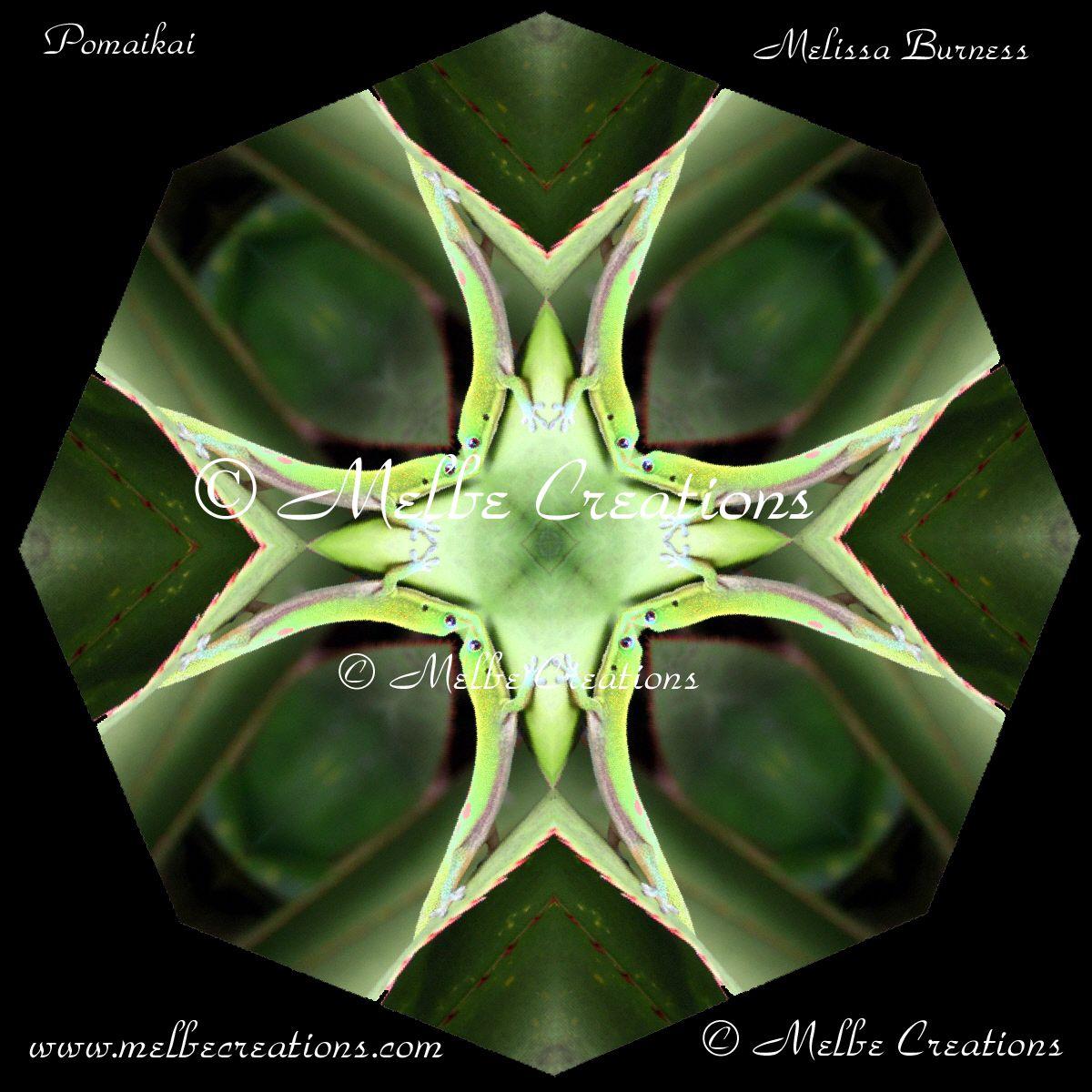 Bear Glass Paperweight Kaleidoscope Mandala Bear Essentials Pinterest