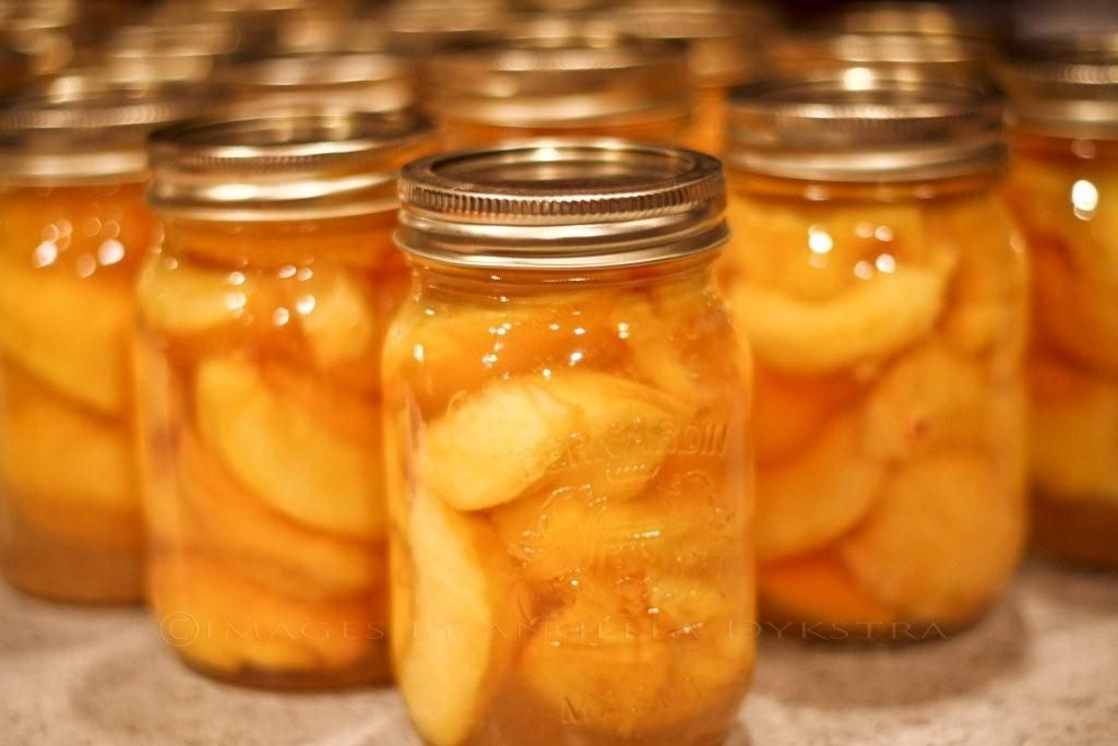 Top 50 Websites For Learning Self-Canning