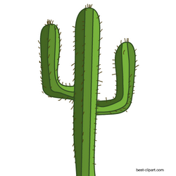 Cactus mexican. Free clipart image wild