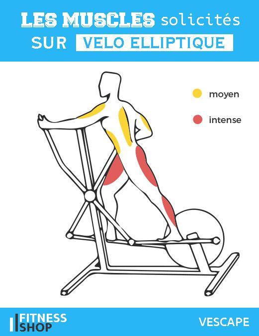 Velo Elliptique Muscles Sollicites Programme Musculation