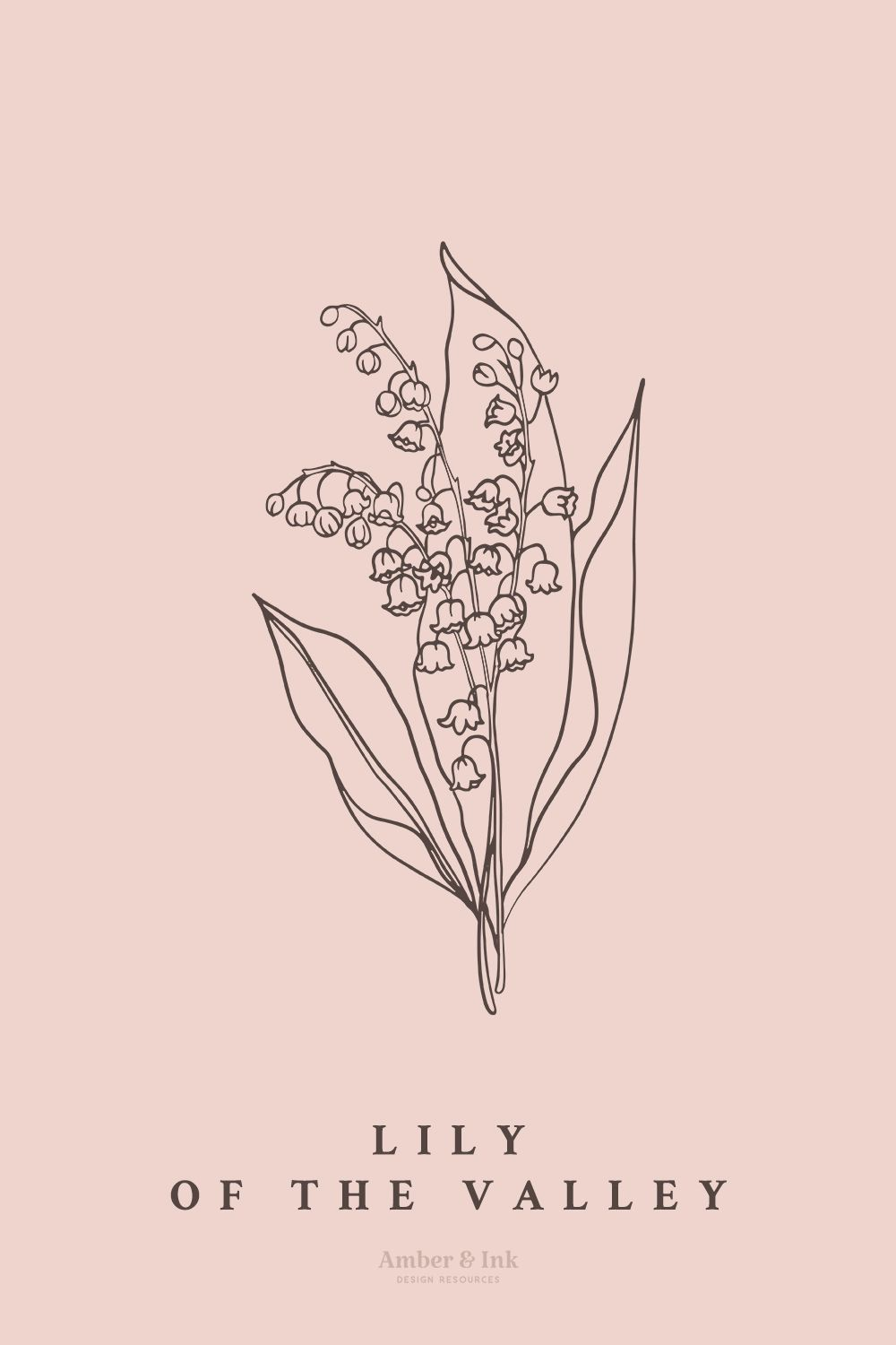 Lily of the Valley Botanical Illustration