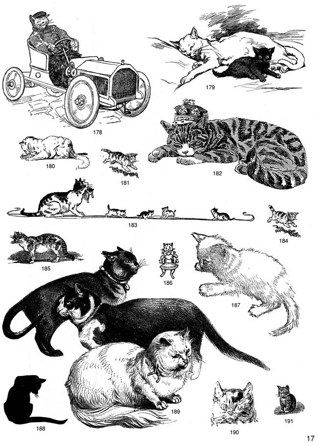 free samples of cat clipart from dover publications page 2 cats rh pinterest com dover clipart dover electronic clipart