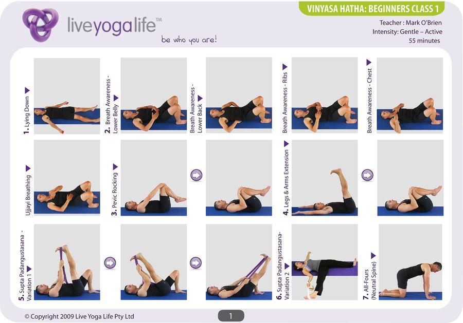 11++ Hatha yoga class for beginners ideas in 2021