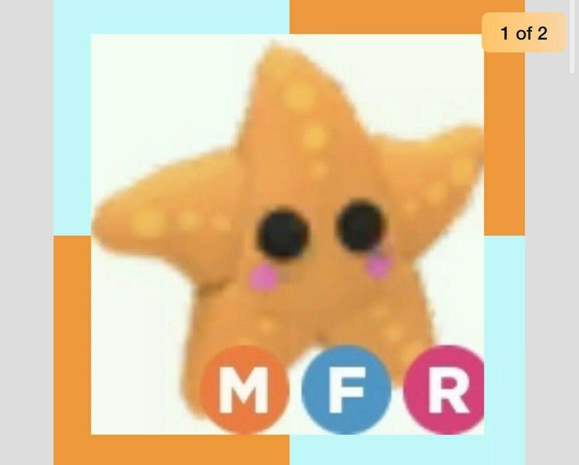 Mega Neon Starfish Mfr Fly Ride Free In Adopt Me With Custom Pc Wallpaper Pet Adoption Roblox Animation Adoption