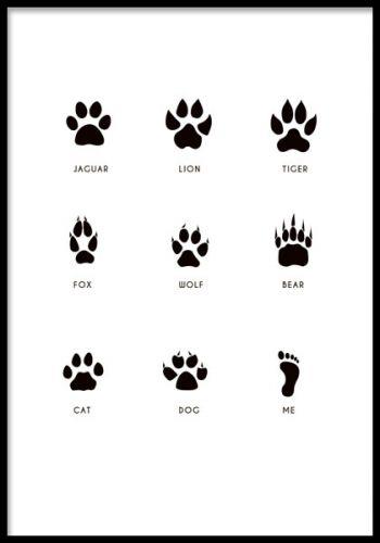 Footprints Poster Plakater Tegning Af Dyr Dyr Tegning