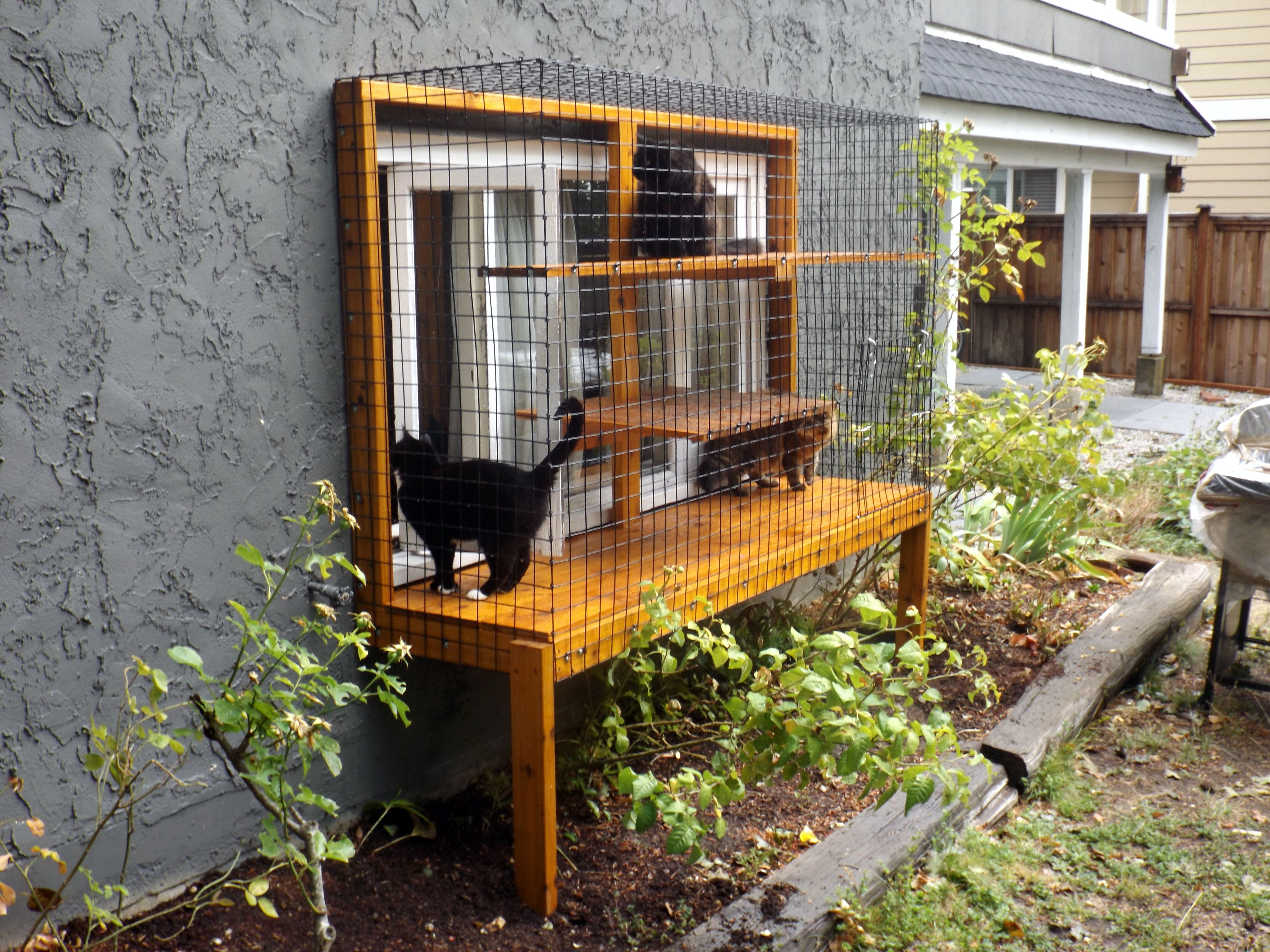Phase 1 Window Enclosure, By Beautiful World Living Environments,  Catscape.ca