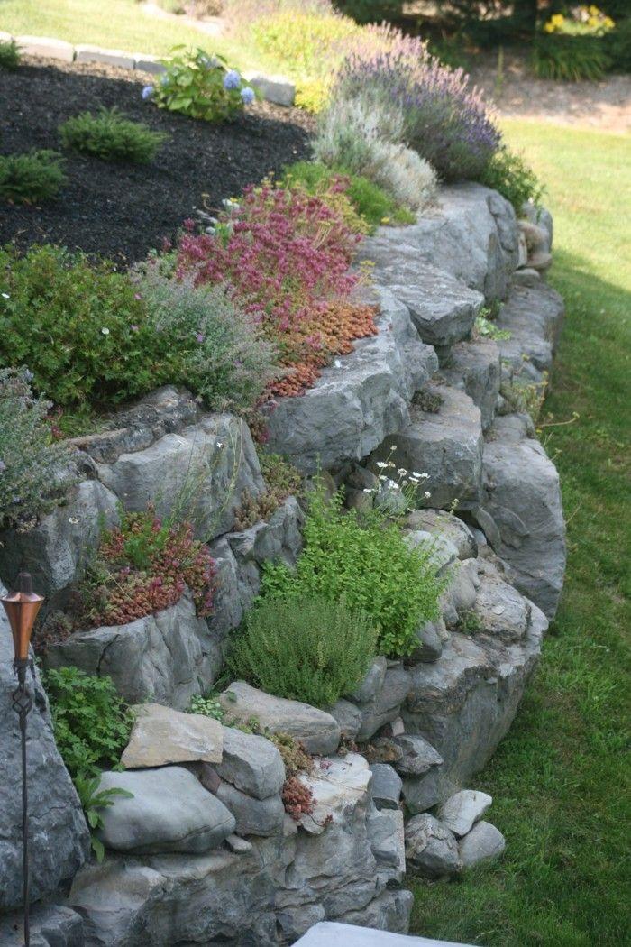 steingarten anlegen welche pflanzen eignen sich am besten, Gartenarbeit ideen
