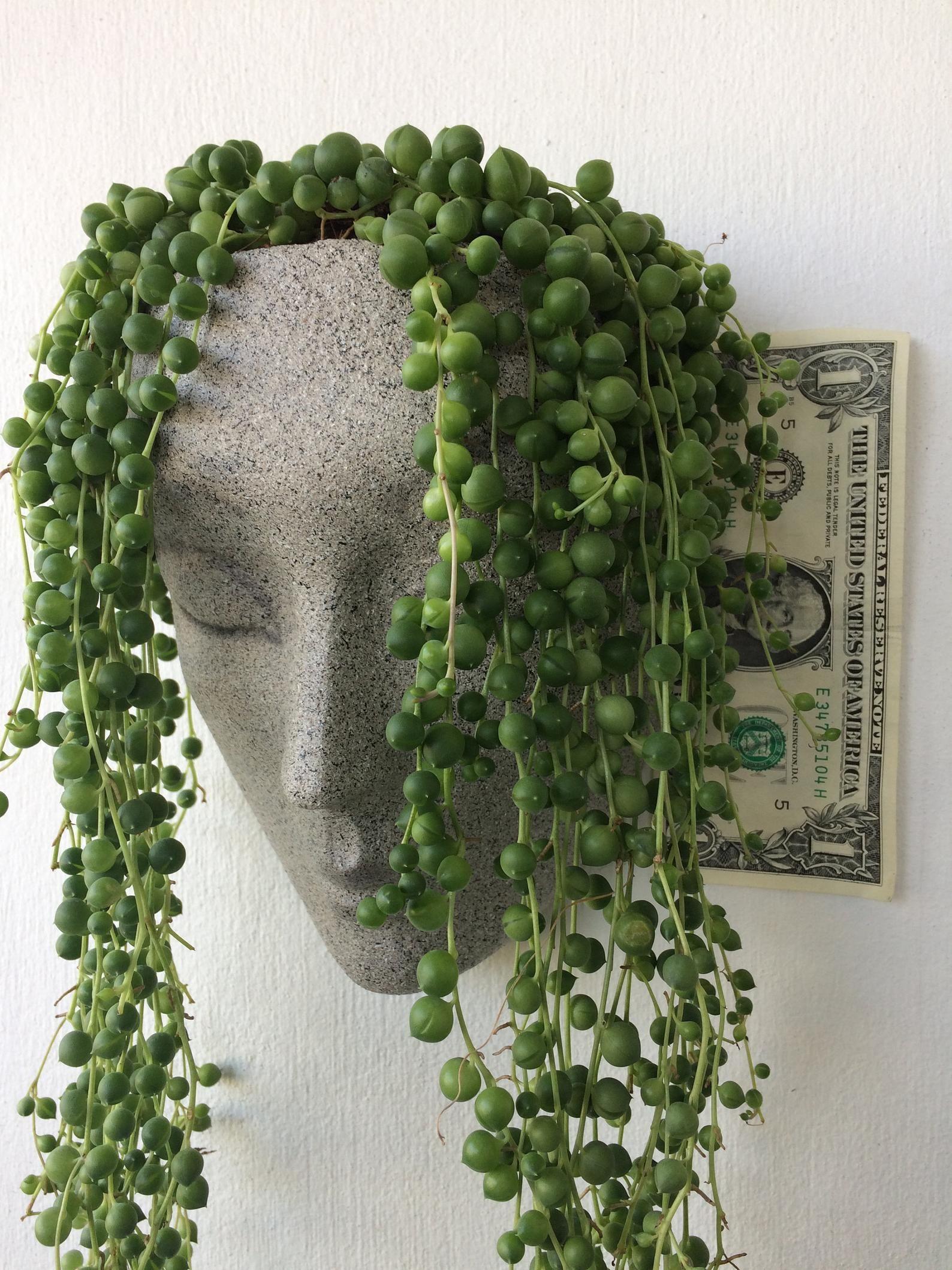 Vertical Planter Headplanters Concrete Planter Wall Etsy Face Planters Head Planters Wall Planter