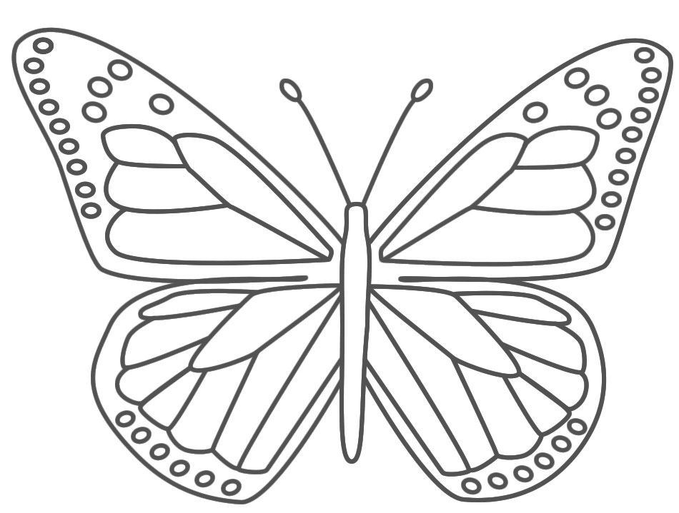 butterfly coloring page for kids | dana | pinterest | butterfly ... - Coloring Pages Butterfly Kids