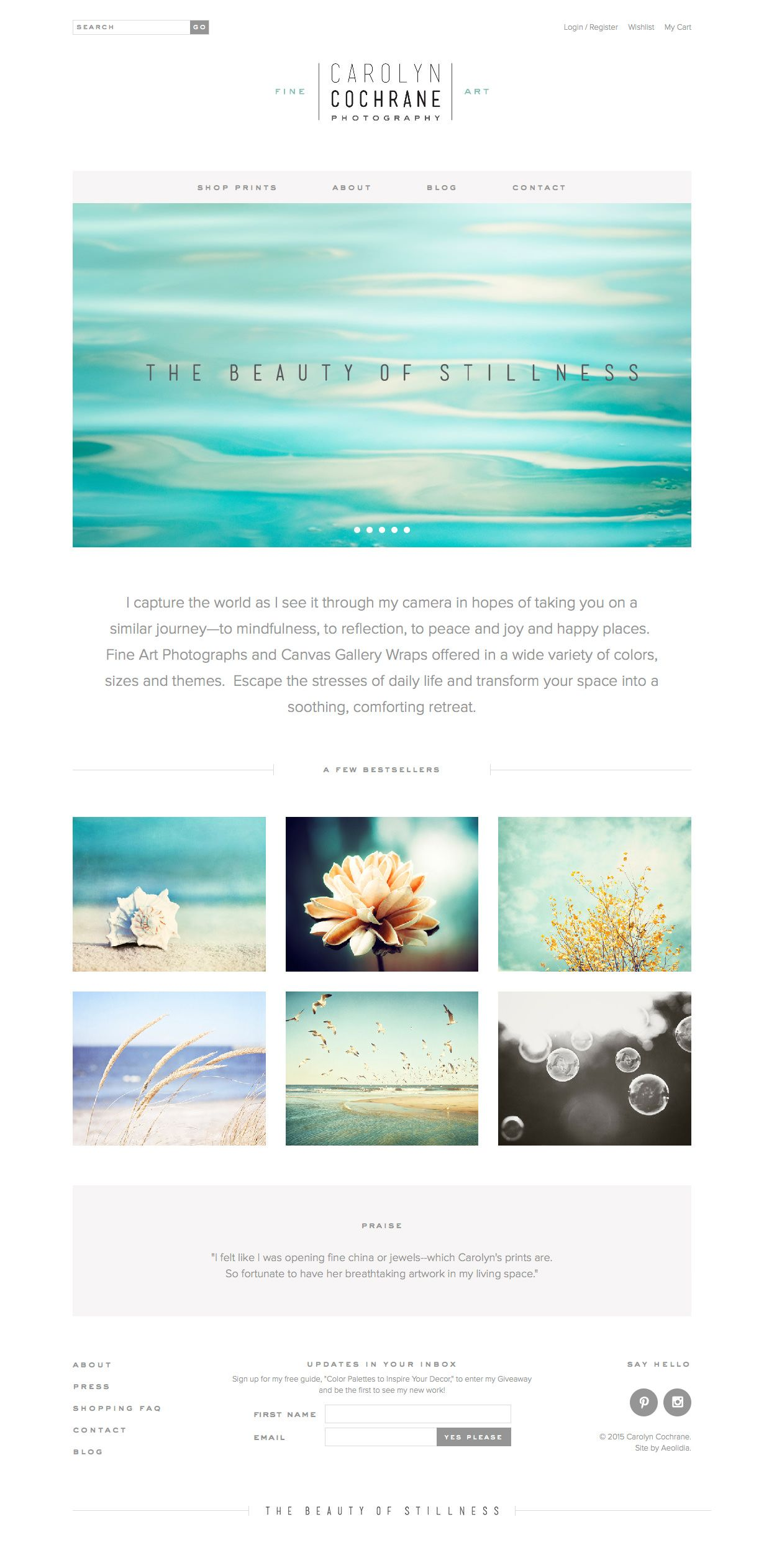 Site design for Carolyn Cochrane Photography- by Aeolidia