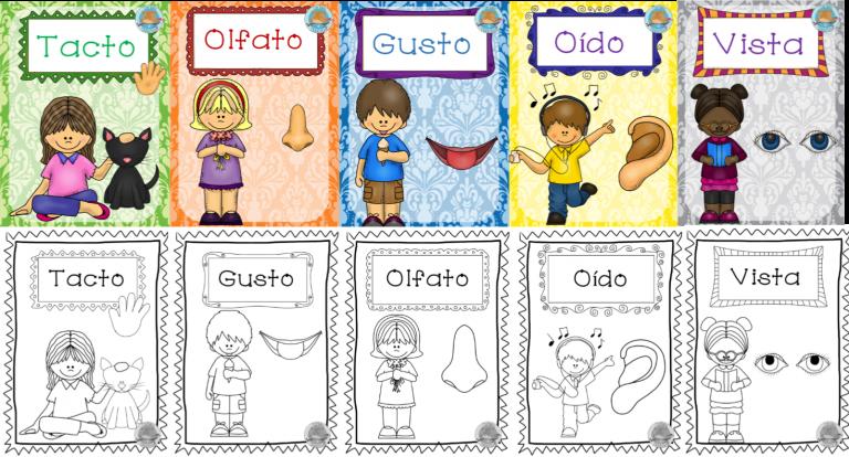 Fabulosos Disenos Para Ensenar Y Aprender Sobre Los Cinco Sentidos Material Educati Los Sentidos Para Ninos Organos De Los Sentidos Preescolar Los 5 Sentidos