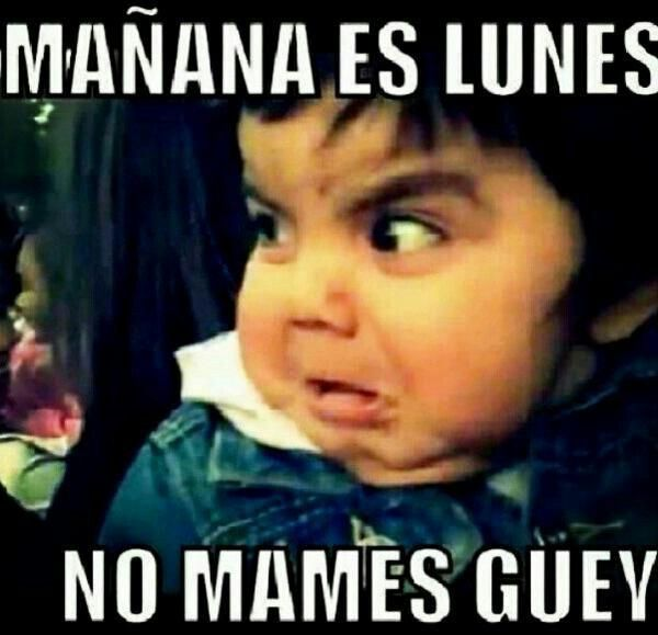 Manana Es Lunes Memes De Risa Risa Videos De Humor