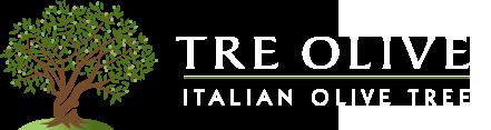 Vector Green Olive Branch Olive Branch Aceitunas Leaf Png Y Psd Para Descargar Gratis Pngtree Olive Branch Tattoo Olive Tree Tattoos Olive Wreath