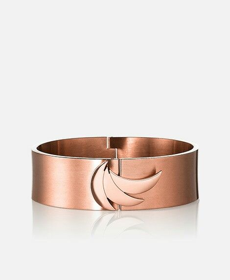 8d073a6ca6c6fc Euforia Ascent Bangle Brushed | New Products - Euforia Collection ...