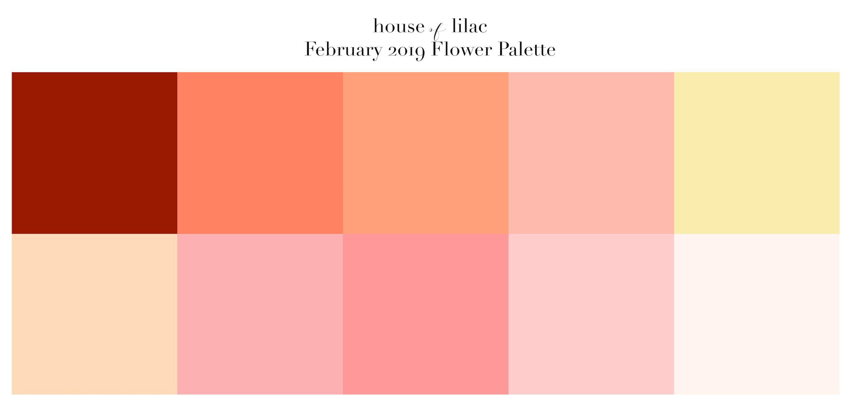 February 2019 Shop Color Palette