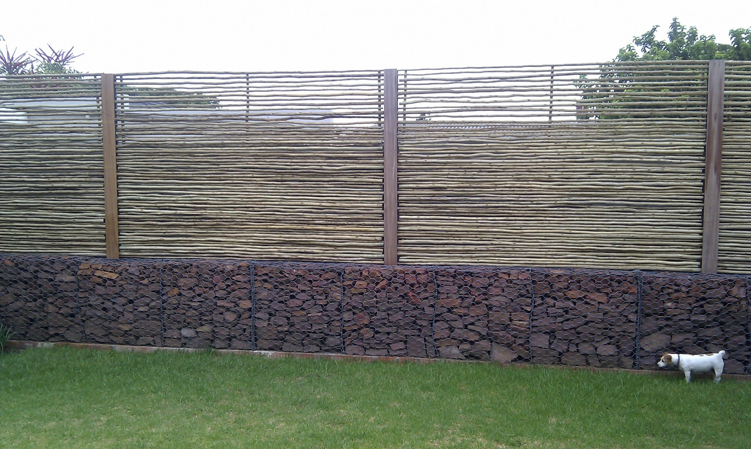 Landscaping Ideas To Hide Ugly Fence : Garden privacy gates concrete wall fence ideas