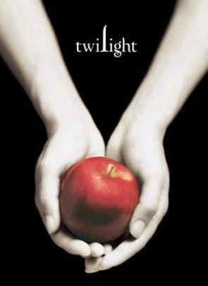 Handmade Twilight Book Cover PDF Cross-Stitch Pattern | BellaStitchery - Patterns on ArtFire