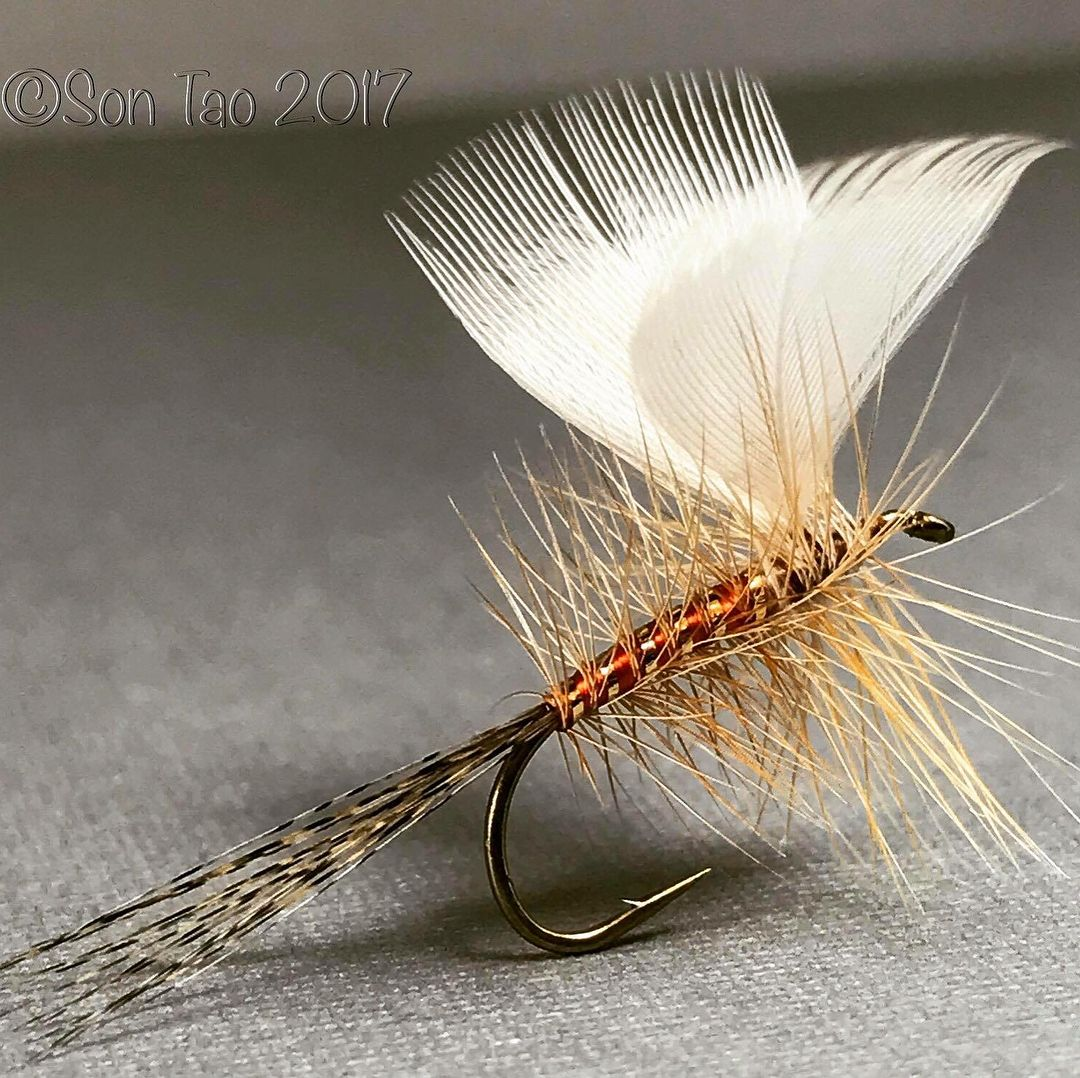 These Were Tied A Year Ago Today I Was Tying For Almost 12 Months When These Were Posted On Facebook It Ll Be 2 Years Fly Fishing Fly Fishing Tips Fly Tying