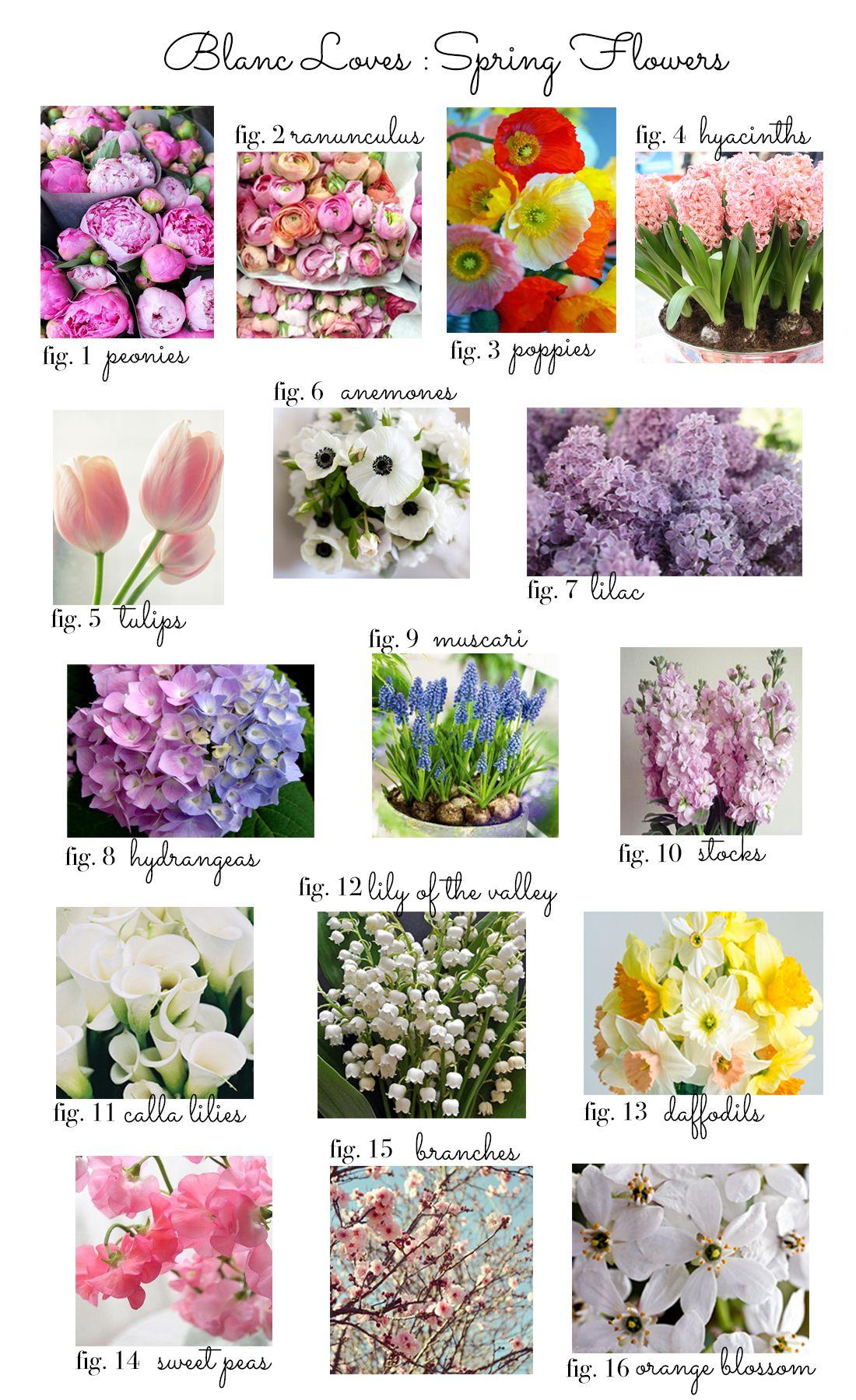 Blanc Loves: Spring Weddings