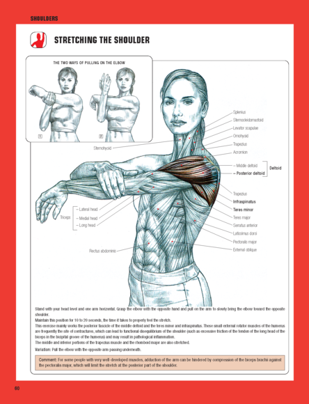 strength training anatomy 3rd edition pdf