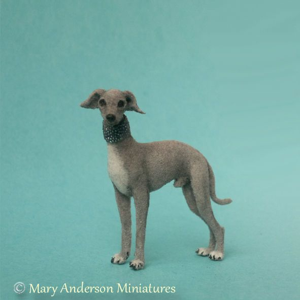1:12 OOAK realistic handmade Italian Greyhound Dog by MARY ANDERSON MINIATURE