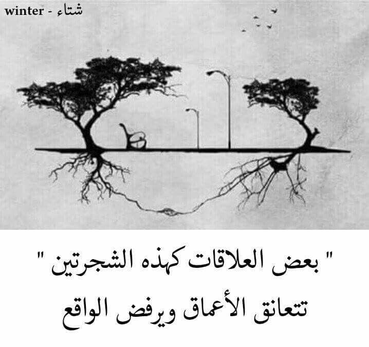 بعض العلاقات كهذه الشجره Photo Quotes Beautiful Words Arabic Quotes