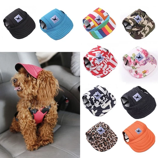 August Free Gift Get This Cool Dogee Baseball Cap For Free Dogeezstyle