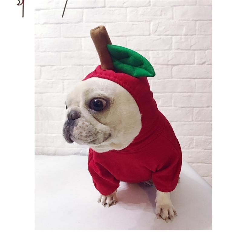 Apple Dog Hoodie Costume Dog Hoodie Dog Sweaters French Bulldog