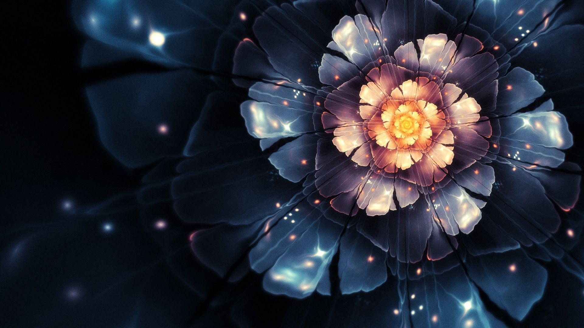 Magic Flowers   flower wallpaper wallpapers flowers magic ...