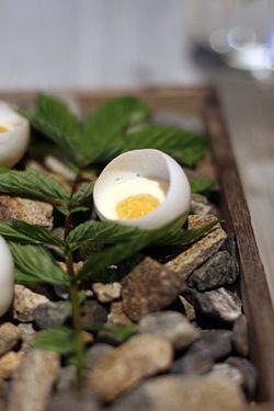 egg at Fäviken