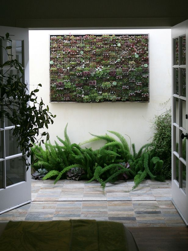 Amazing Outdoor Walls And Fences | Living Walls And Succulents Garden